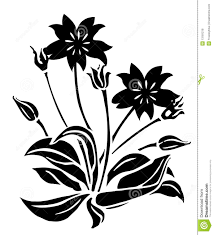 black flower black flower and bud pattern stock illustration illustration of