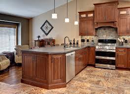 Modern Cherry Kitchen Cabinets Kitchen Desaign Original Rebekah Zaveloff Traditional Kitchen