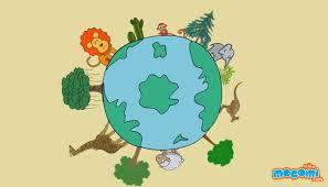 biodiversity environment for kids mocomi