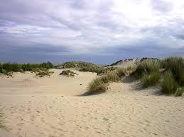 chambre d hote bray dunes mistigri et cie chambres d hôtes bray dunes