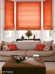 Fabric Blinds For Windows Ideas Lounge Blinds And Color Pop This Type Of Window Treatment For The