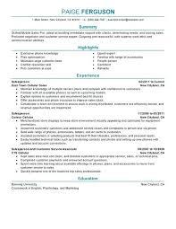 Work Experience Resume Sales Associate Sample Resume For Sales Associate No Experience Store Sales