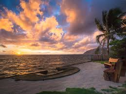 special 399 oceanfront private oasis turtle point beach house