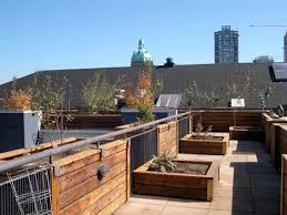 Deck Roof Ideas Home Decorating - how to build rooftop garden ideas garden