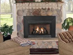 Fireplace Insert Screen by Inserts Vent Free Direct Vent Gas Wood Fireplace Heater Inserts
