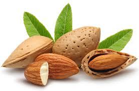 Minyak Almond 15 manfaat dan khasiat minyak almond untuk kesehatan khasiat