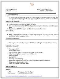 cv resume example sample resume and cv cv resume example