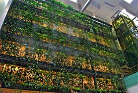 greenroofs com projects singapore changi airport terminal 3