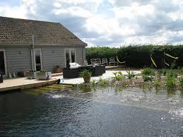 Natural Pools by Tips To Build Your Diy Natural Swimming Pools Homesfeed