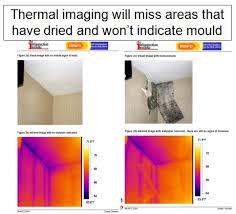 black light mold detection thermal imaging infra red use for mold detection