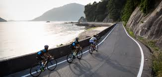 share the damn road cycling jersey bicycling pinterest road roadtripping japan cyclingtips