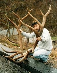 the top 40 typical and nontypical elk of all time outdoor life