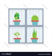 flat design potted plants in the box royalty free vector
