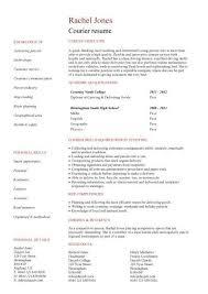 summary ideas for resume hitecauto us