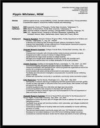 100 Work Methodology Template Free Resume Templates Work