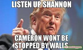 Cameron Meme - listen up shannon cameron wont be stopped by walls meme donald