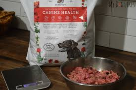 Healthy Kitchen Dog Food by Getting Charlie Back On Track With Dr Harvey U0027s Canine Health