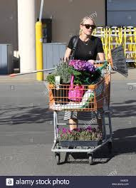 naomi watts buys flowers and plants at home depot featuring naomi