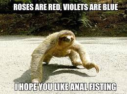 Sloth Meme Images - 75 best inappropriately hilarious sloth images on pinterest sloth