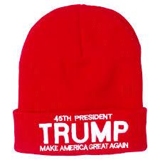 American Flag Beanie 45th President Knit Beanie Red