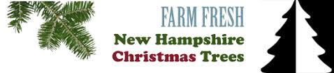 mail order christmas trees new hampshire christmas trees
