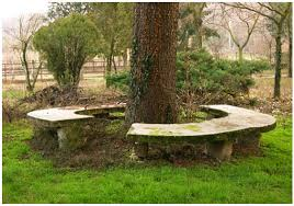 25 benches around the tree u2013 of course i love handicrafts