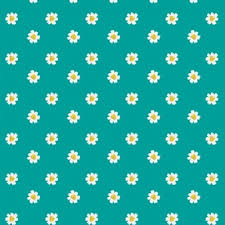 daisy vectors photos psd files free download