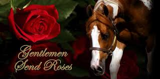 send roses harnish performance horses gentlemen send roses