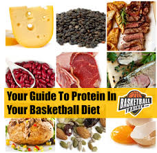 best protein for basketball players basketball coaching