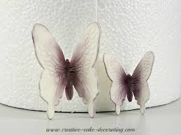 Large Butterfly Decorations by Butterfly Wedding Cake Decorations