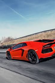 Lamborghini Aventador Limo - 1170 best lamborghini images on pinterest car ferrari and cool cars