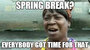 What Can You Do Meme - 18 spring break memes for those who get time off and those who
