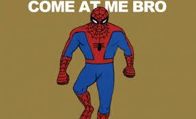 Spider Bro Meme - lovely spider bro meme spiderman memes funny cartoons kayak