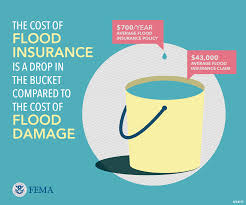 Estimate Flood Insurance Cost by Graphic Cost Of Flood Insurance Vs Flood Damage Yellow Fema Gov