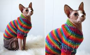 sweaters for cats cat clothes 55 items of cat clothing for your feline