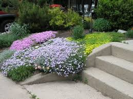 garden ideas top online garden design courses popular home