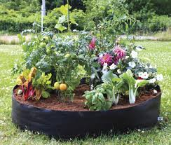 Vegetable Garden Containers by Soil Vegetable Gardening In Containers 1878 Hostelgarden Net