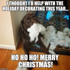 Cute Christmas Meme - i thought i d help decorate for christmas imgflip