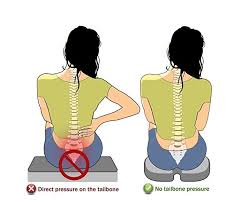 18 best tailbone pain solutions images on pinterest seat