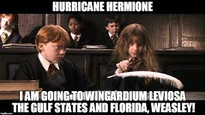 Hermione Granger Memes - 30 funniest hermione granger memes that will make you laugh hard