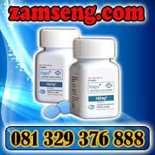 obat kuat pria terbaik obat viagra usa asli 081329376888