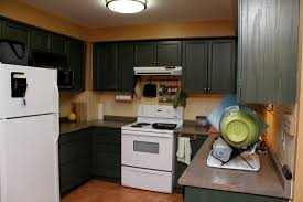 kitchens with dark cabinets and white appliances memsaheb net