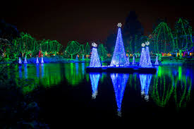 Zoo Lights Columbus Zoo by Wildlights
