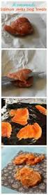 homemade salmon jerky dog treats these are so easy to make and