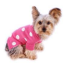 pet sweaters amazon com stinky g pink polka dot pet sweater with