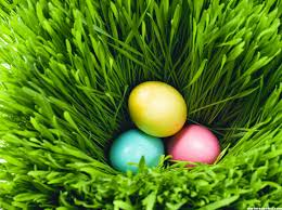 Easter Egg Quotes Top 20 Easter Eggs 2017 Pictures Hd Images Pictures