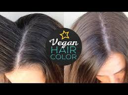 light chestnut brown naturtint naturtint hair color review cruelty free youtube
