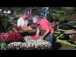 Botanical Gardens Grand Junction Bookcliff Gardens Nursery And Gardening Center In Grand Junction