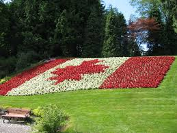 canada flowers canada flag in flowers by trebius on deviantart