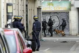 belgian sheepdog apartment rip hero police dog killed by a woman bomber urdogs